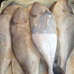 扒皮鱼怎么做简单好吃