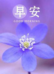 发朋友圈早安精致短句_积极好心态早安语
