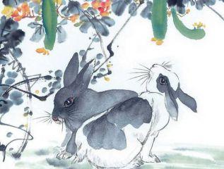 <b>属兔哪些年份容易发财</b>
