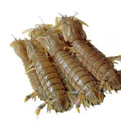 皮皮虾的五种家常做法技巧